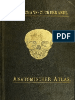 Atlas der descriptiven Anatomie des Menschen