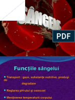 118492507-Sangele-CURS.ppt
