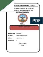 DESARROLLO DE LA TECNOLOGIA EN LOS HOSPITALES DEL PERU .doc