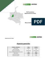 Perfil Tolima