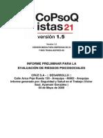 INFORME PRELIMINAR 1.pdf