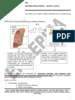AP-TRANSTORNOS-CIRCULATORIOS-16-03-15.pdf