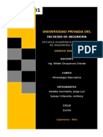 GENESIS MINERAL.docx