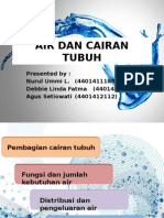 Kelompok 10 Air Dan Cairan Tubuh