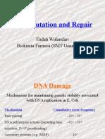 DNA Repair Farmasi 2014
