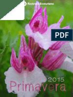 Primavera 15-Programa Rockrose Ecoturismo