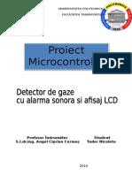 Micro proiect.docx