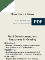 2 How Plants Grow
