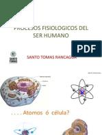 1 CELULA.pdf