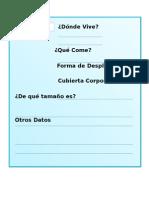 Ciencias Flora Fauna Chilena2