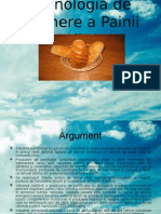 Tehnologia de Obtinere a Painii Albe