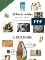 Molinería.pdf