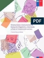 ComprensiOn Lectora 1ro Medio Pruebas Diagnóstica-Intermedia y Final
