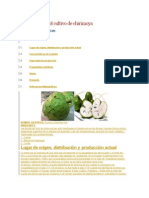 Manual de La Chirimoya