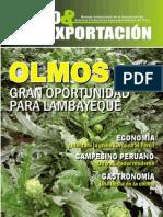 AGRO 19 OK.pdf