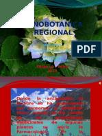 Etnobotánica Regional