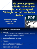 Metodos coleta e coloracao Papanicolaou - Prof  Jacqueline Plewka.pdf
