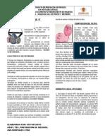 Uso y Mantención de Respirador y Filtro P-100