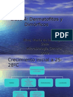 clase4dermatofitosydimorficos-091111105932-phpapp01