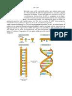 0.- ADN.pdf