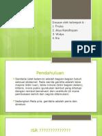 ppt-kimlin