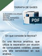 Exposicion Cromatografo de Gases