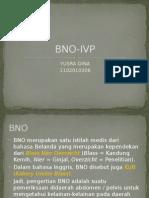BNO-IVP
