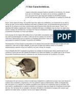Signos Del Zodiaco Y Sus Caracteristicas.