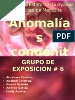 Anomalías-Congénitas-1