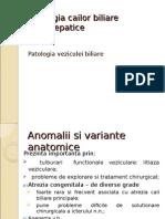 Patologia Cailor Biliare Extrahepatice