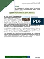 MODULO 3 Tema 2Poblamiento Rural y Urbano