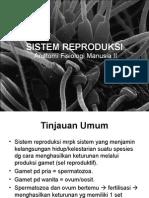 Sistem Reproduksi 2011-2012