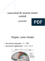 sdr neuron motor central