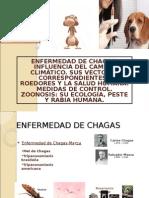CLASE CHAGAS Y MALARIA.ppt