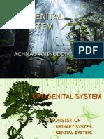 UROGENITAL SYSTEM1
