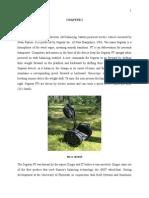 6-Main Prjct Report