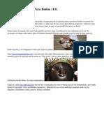 Article   Canciones Para Bodas (11)