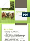 AGRICULTURE MLS2C (final report)