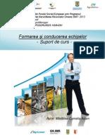 Suport-curs-Formarea-Echipelor.pdf