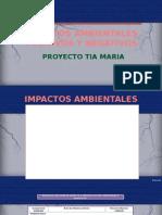 impactos potenciales