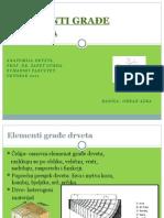 Anatomija drveta (elementi gradje drveta)