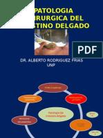 10. Patologia Quirurgica Del Intestino Delgado 2014