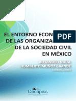 Entorno Economico OSC en México