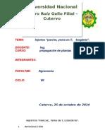 TIPOS DE INJERTO DE YEMA.docx