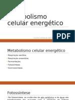 Metabolismo Celular Energético