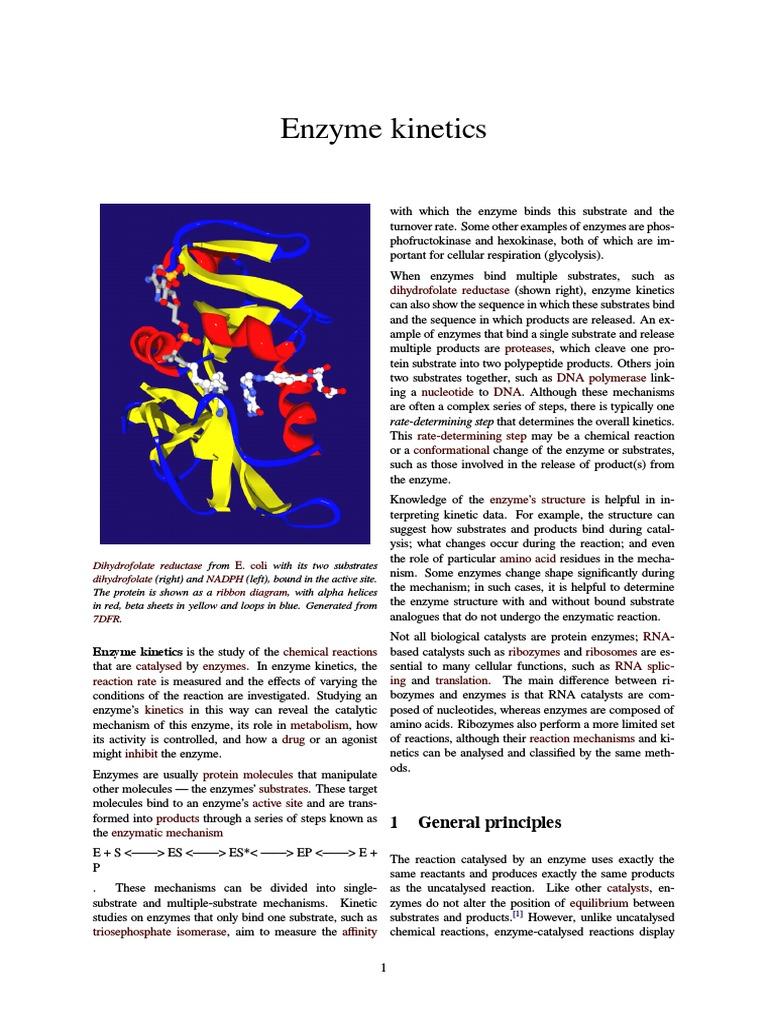 enzyme kinetics   enzyme kinetics   enzyme inhibitor