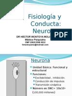 2da Clase NEURONA Ultimo.ppt Ultimo