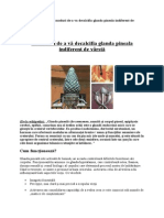 11 Moduri de a Decalcifia Glanda Pineala