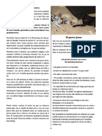 Revista Canina Página 27