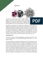 Otomicosis Por Aspergillus